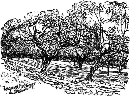 Vincent van Gogh - Orchard